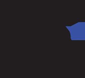 Royce Gracie Jiu-Jitsu Academy OC Logo